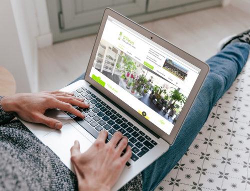 Création site internet D'Fleurs